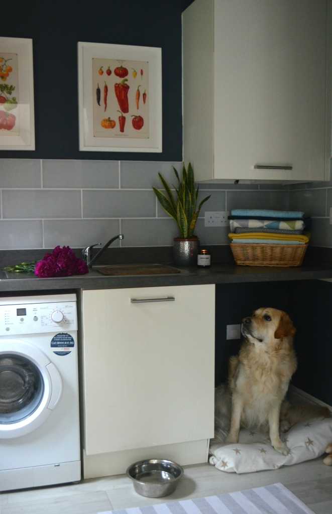 Laundry Room Makeover - The Cardiff Cwtch