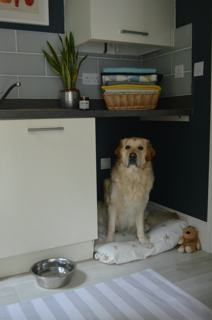 Mud Room Dog Bed - The Cardiff Cwtch
