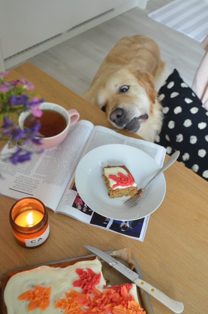 The Cardiff Cwtch: Cosy Slice of Carrot Cake with a Cuppa and a Pupper!