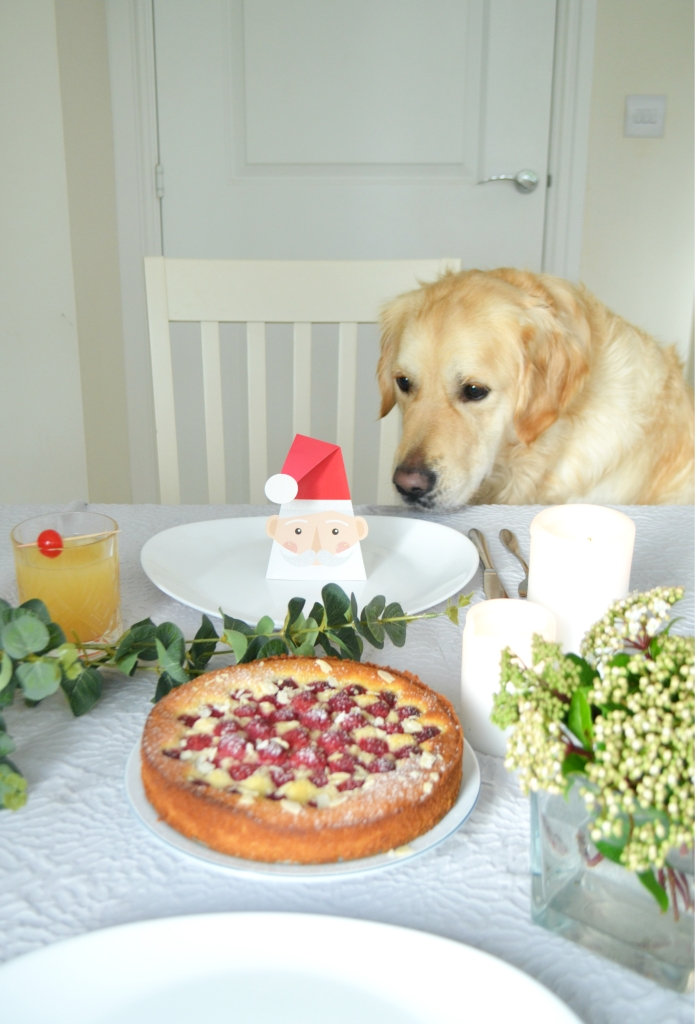 Christmas Golden Retriever - Raspberry and Almond Cake - The Cardiff Cwtch