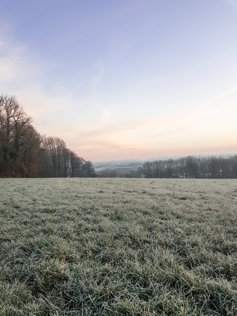 Finding Joy in January - The Cardiff Cwtch
